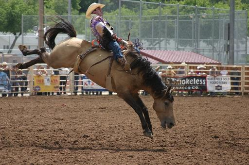 deadwood_rodeo_1